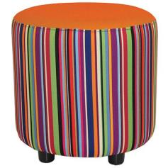 Bestseller Clementine and Carousel Drum